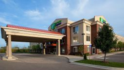 Holiday Inn Express & Suites DETROIT - FARMINGTON HILLS - Northville (Michigan)
