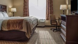 Comfort Inn and Suites Farmington - Vict - Farmington (New York)