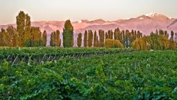 Hotel Cavas Wine Lodge - Mendoza