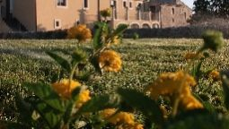 Artemisia Resort Country Hotel - Ragusa