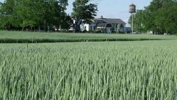 Hotel Stevenson Farms B&B - Harvest Spa - Barrie