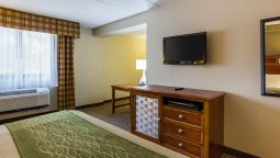 Room Comfort Inn Washington Dulles International