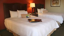 Room Hampton Inn Chicago-Tinley Park