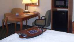 Kamers Hampton Inn Wichita Falls-Sikes Senter Mall