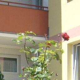 Homing Immobilien Maria Enzersdorf Aussenansicht - Homing_Immobilien-Maria_Enzersdorf-Aussenansicht-1-562483.jpg