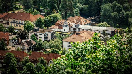Hotel Mühl Vital-Resort Bad Lauterberg im Harz - 4 HRS ...