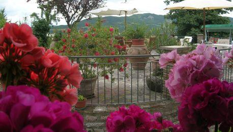 Hotel La Terrazza del Subasio B&B a Costa di Trex, Assisi