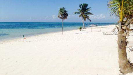 Hotel Pavoreal Beach Resort Tulum à