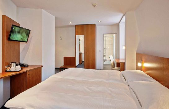 Double room (standard) Sorell Hotel Rex