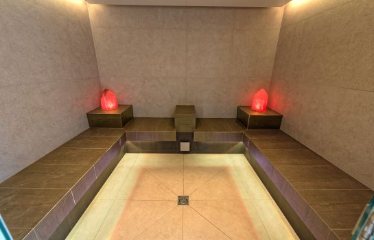 Steam bath Alphotel
