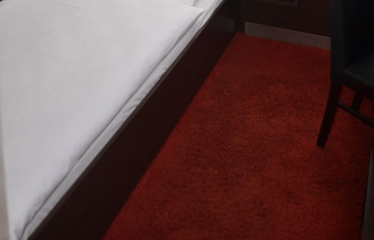 Chambre individuelle (confort) AAA Budget Hotel
