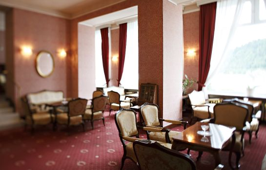 Bar de l'hôtel Grand Hotel Toplice Sava Hotels & Resorts