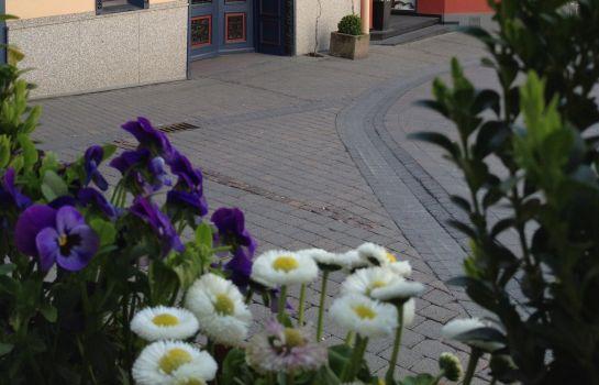 Berg\'s Alte Bauernschänke Wellness AKZENT Hotel - Rüdesheim am Rhein ...