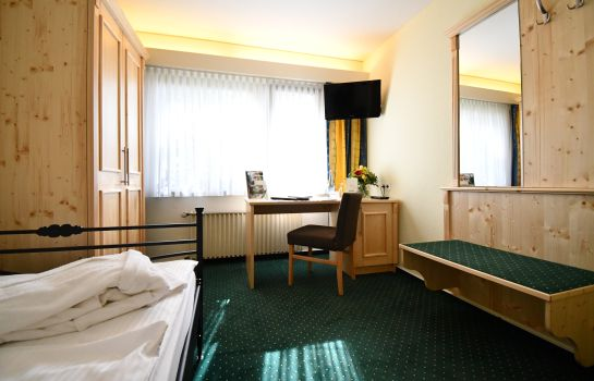 Single room (standard) Romantik Parkhotel Am Hammerberg