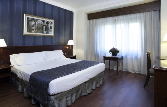 Double room (standard) Avenida Palace