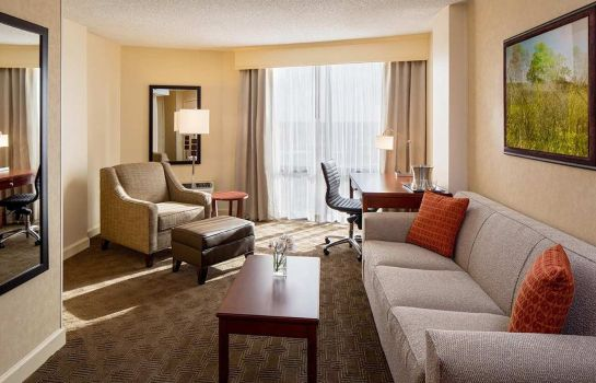 Suite Hilton Houston Galleria Area