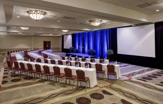 Congresruimte Hilton Houston Galleria Area