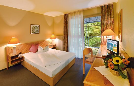 Single room (standard) Schwarzwald Parkhotel