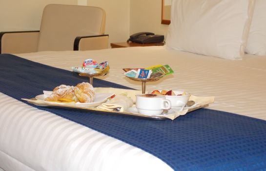 Zimmer Holiday Inn VENICE - MESTRE MARGHERA