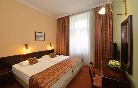 Chambre individuelle (standard) Palatinus City Center