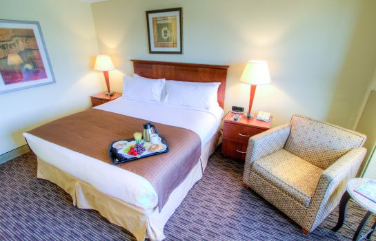Zimmer Holiday Inn TAMPA WESTSHORE - AIRPORT AREA