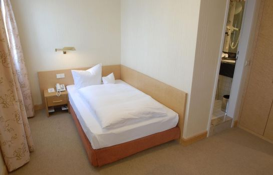 Single room (standard) Dom Hotel Limburg
