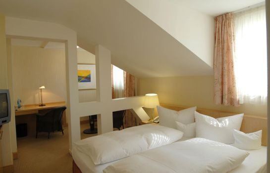Double room (standard) Dom Hotel Limburg