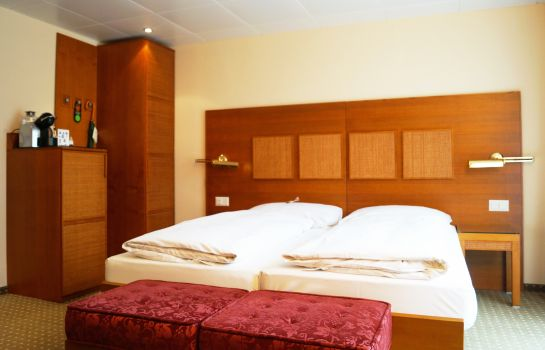 Double room (standard) Engimatt City-Gardenhotel