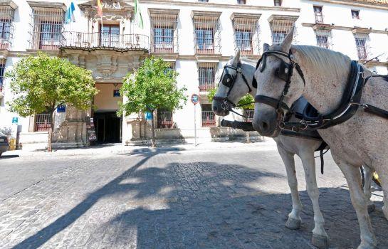 Tryp Jerez Hotel In Jerez De La Frontera Hotel De