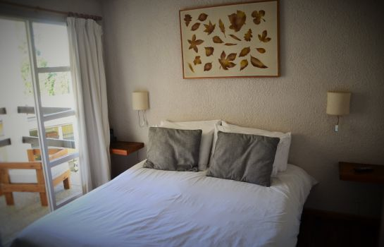 Double room (standard) Aldea Andina Resort