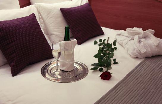 Hotel Mercure Cieszyn Hotel Info