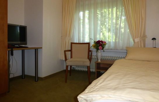 Single room (standard) Hotel Villa Luise