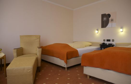 Double room (superior) VitalHotel Ascona