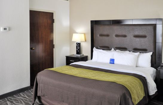 Suite Comfort Inn Downtown Charleston