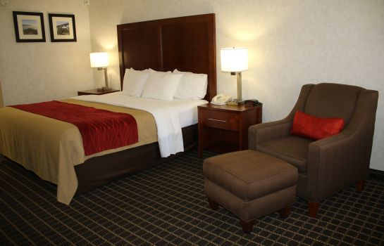 Chambre individuelle (standard) Comfort Inn Near Old Town Pasadena in Ea