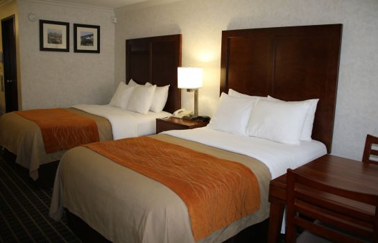 Chambre double (standard) Comfort Inn Near Old Town Pasadena in Ea