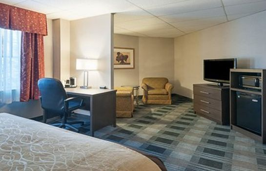 Suite Comfort Inn Ballston