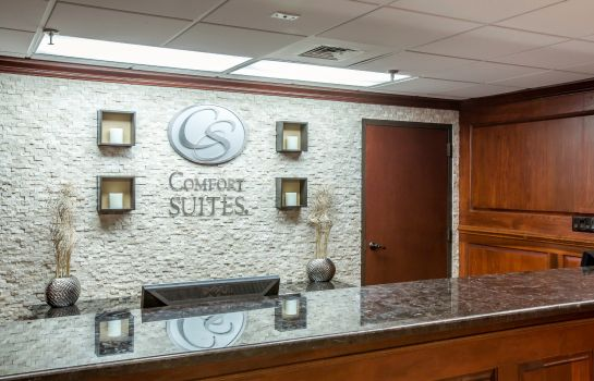 Lobby Comfort Suites Outlet Center