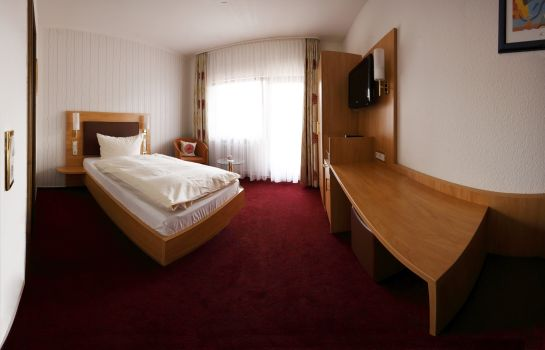 Single room (standard) Hotel Fortuna