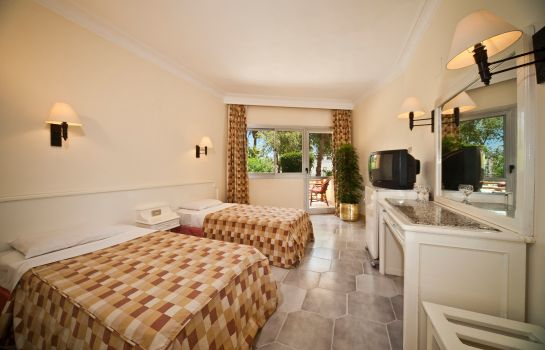 Double room (standard) Festival Shedwan Golden Beach Resort
