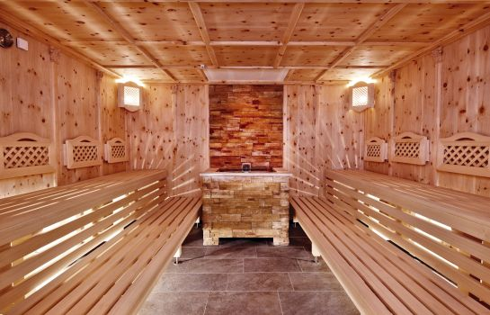 Sauna Der Alpbacherhof Natur & Spa Resort ****s