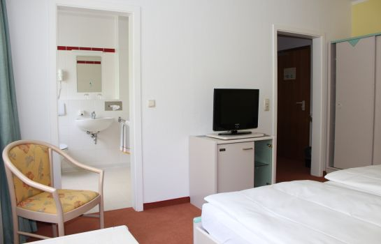 Double room (standard) Elbotel
