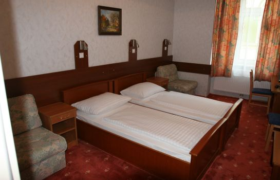 Double room (standard) Terminus