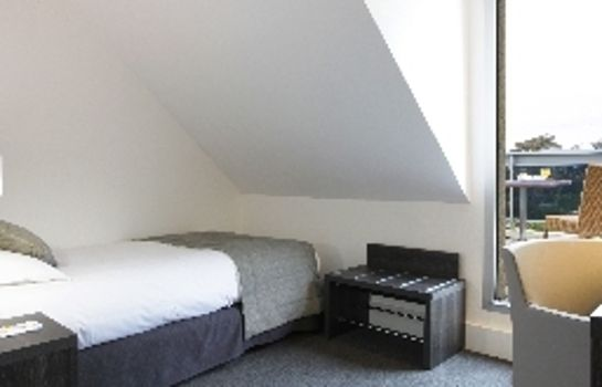 Single room (standard) BW PLUS HOTEL DU PARC CHANTILL
