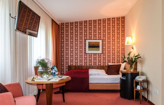 Single room (standard) Akzent Hotel Goldner Hirsch