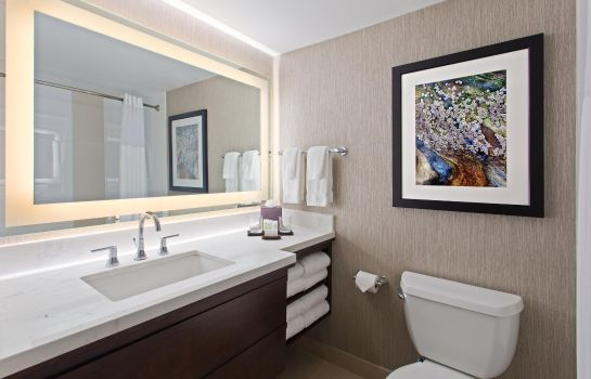 Suite Embassy Suites by Hilton Orlando-Int*l Drive-Convention Ctr