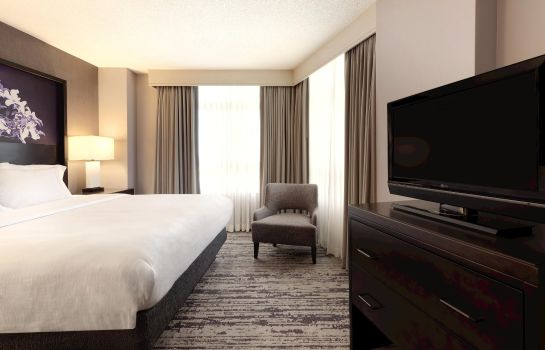 Suite Embassy Suites by Hilton Atlanta Centennial Olympic Park