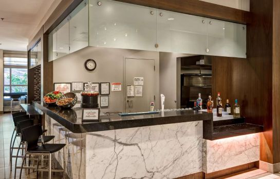 Hotel-Bar Embassy Suites by Hilton Chicago Downtown