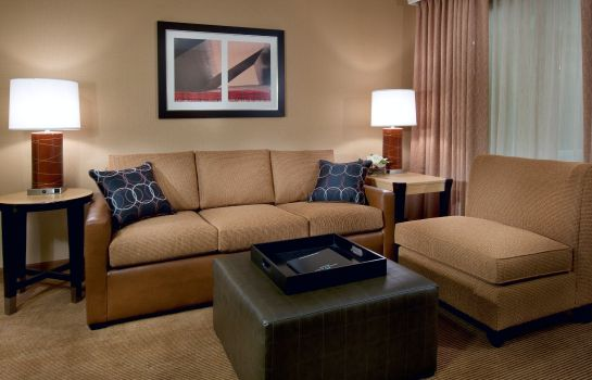 Suite Embassy Suites by Hilton Chicago Downtown