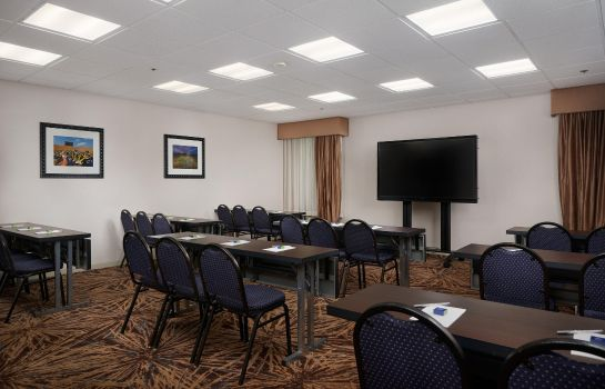 Sala congressi Hampton Inn Ann Arbor-South